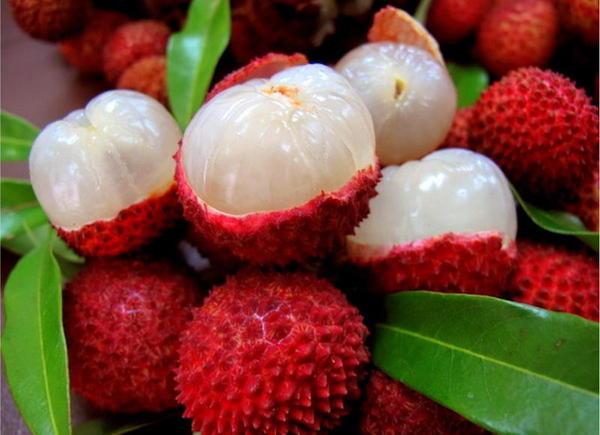 Lichi gran antioxidante