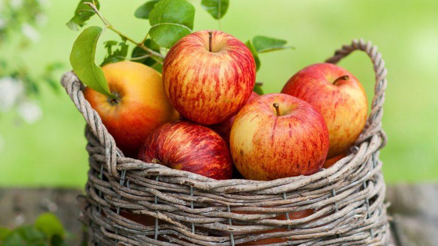 Manzana fuente de poderosos beneficios.