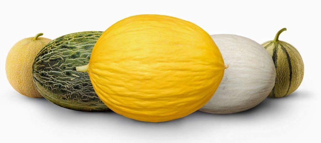 Melon Beneficios y propiedades