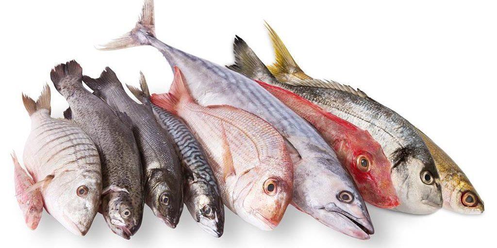 Beneficios del Pescado azul para la salud.