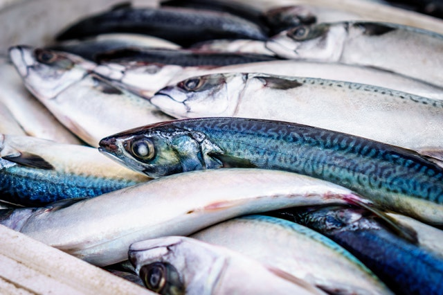 Beneficios saludables del pescado