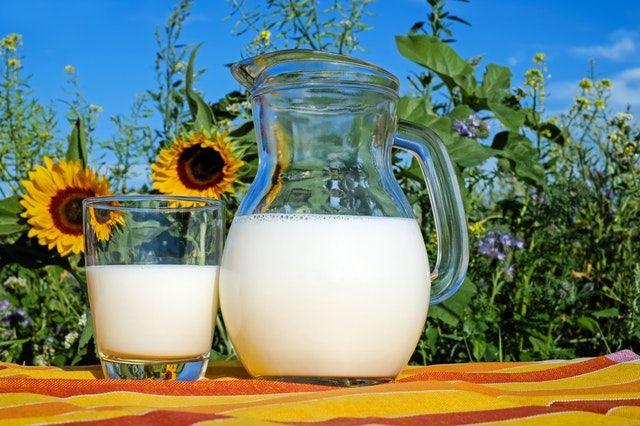 Todas las propiedades de la leche para la salud